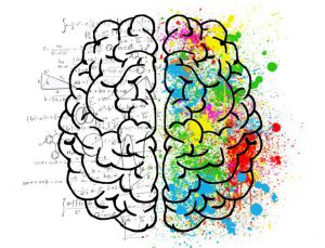 We use just 10 of our brains US brain mind psychology idea drawing 768x585 300x229 - We use just 10% of our brains -US-brain-mind-psychology-idea-drawing-768x585